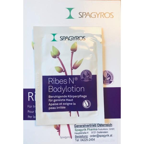 Ribes Nigrum Gemmo Bodylotion Testgröße 10 ml